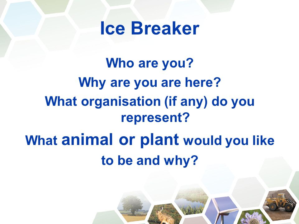 Ice Breaker Who are you? Why are you are here? What organisation (if any) do you represent? What animal or plant would you like to be and why?