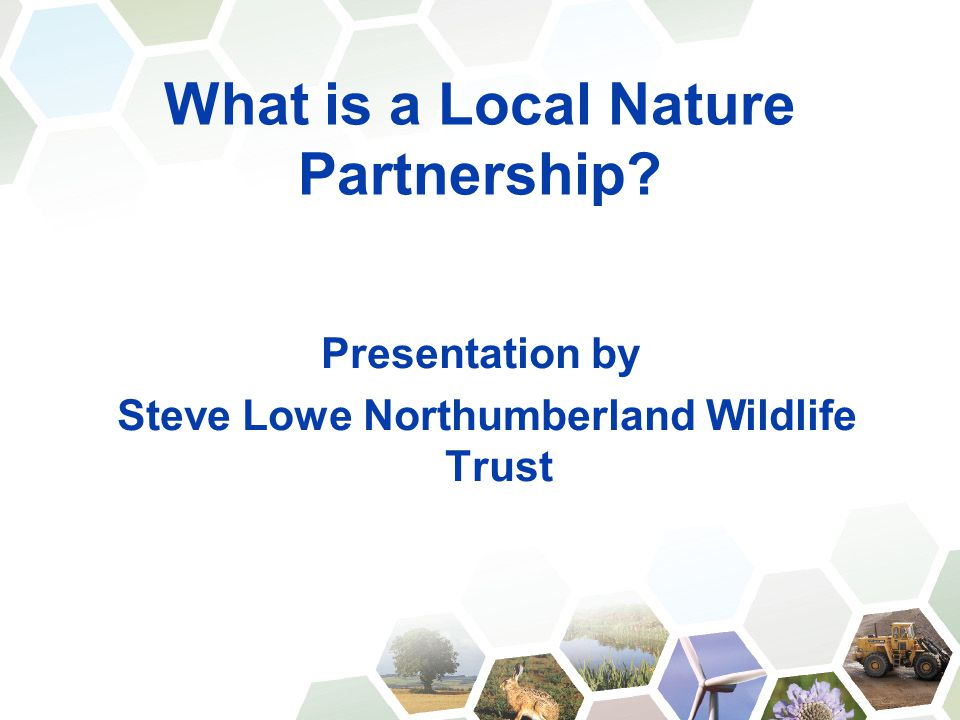 What is a Local Nature Partnership? Presentation by Steve Lowe Northumberland Wildlife Trust
