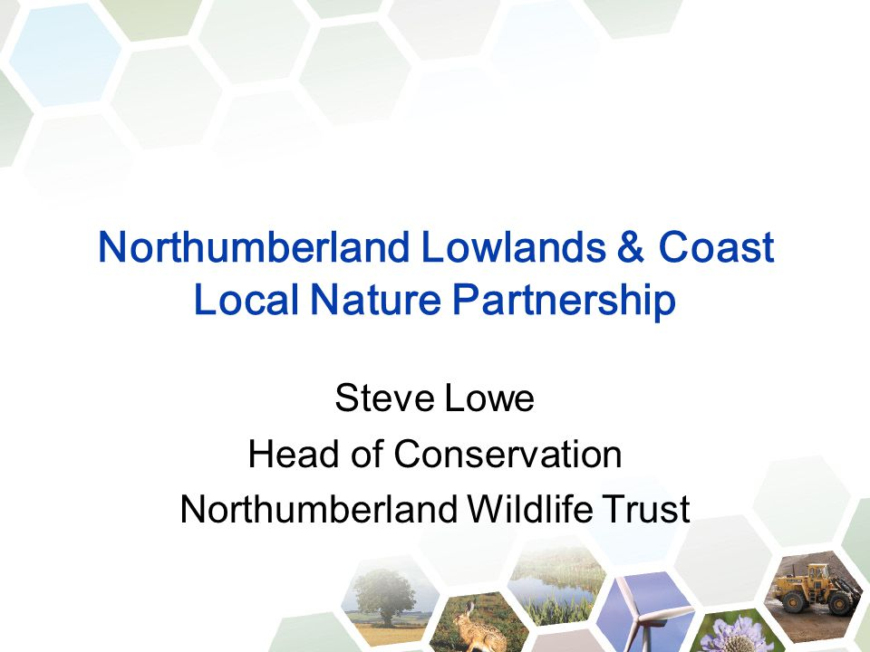 Northumberland Lowlands & Coast Local Nature Partnership Steve Lowe Head of Conservation Northumberland Wildlife Trust