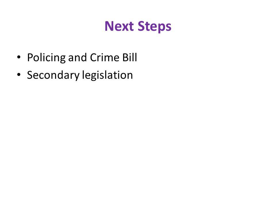 Next Steps Policing and Crime Bill Secondary legislation