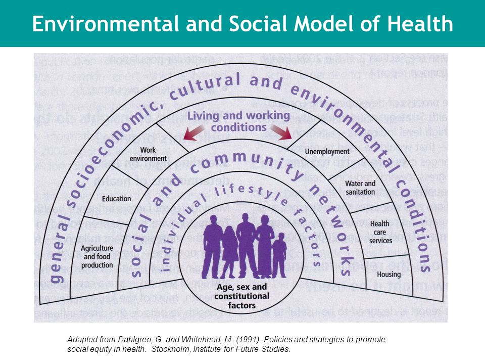 Social Model of Health Adapted from Dahlgren, G. and Whitehead, M.