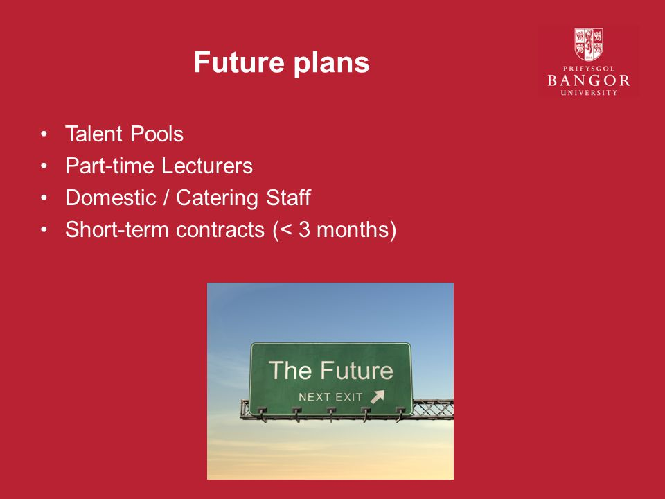 Future plans Talent Pools Part-time Lecturers Domestic / Catering Staff Short-term contracts (< 3 months)