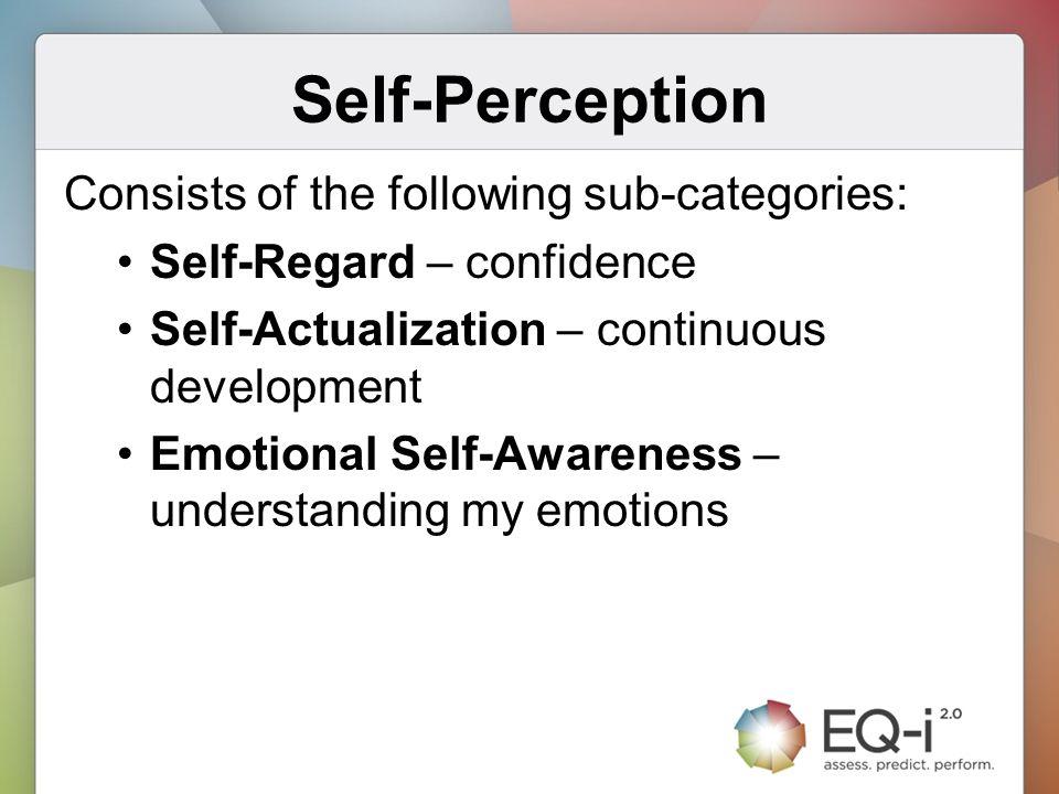 Self-Perception Consists of the following sub-categories: Self-Regard – confidence Self-Actualization – continuous development Emotional Self-Awarenes