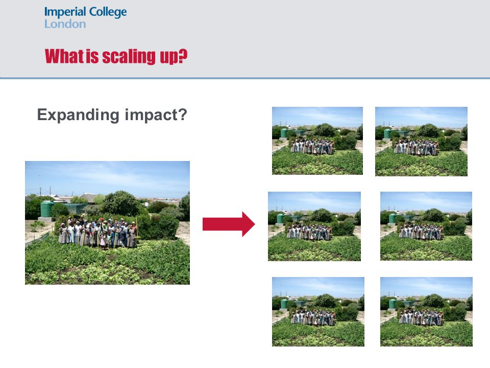 What is scaling up? Expanding impact?