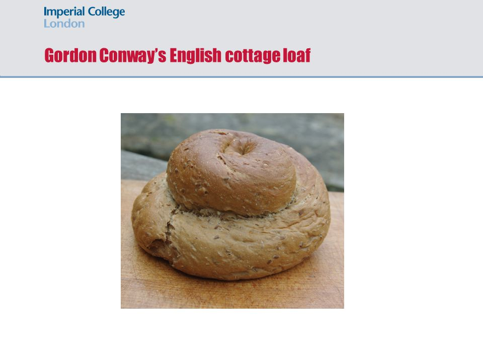 Gordon Conway's English cottage loaf