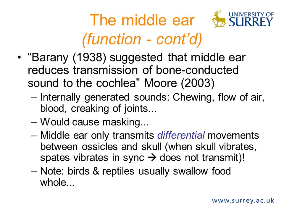 """The middle ear (function - cont'd) """"Barany (1938) suggested that middle ear reduces transmission of bone-conducted sound to the cochlea"""" Moore (2003)"""