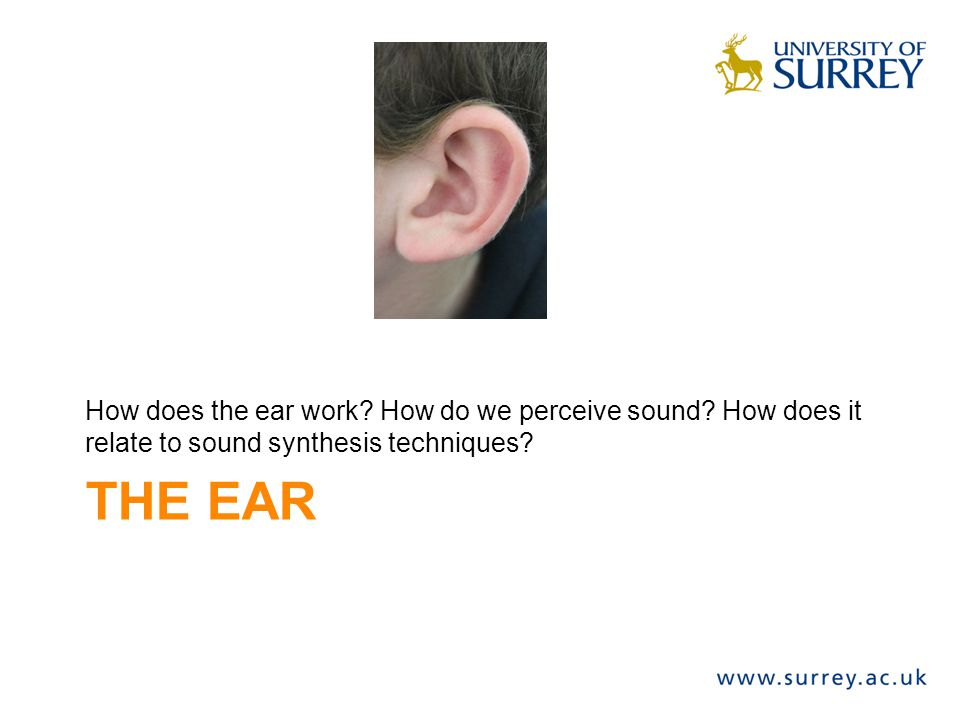 THE EAR How does the ear work? How do we perceive sound? How does it relate to sound synthesis techniques?