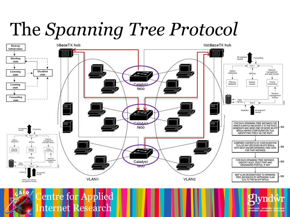 Centre for Applied Internet Research The Spanning Tree Protocol