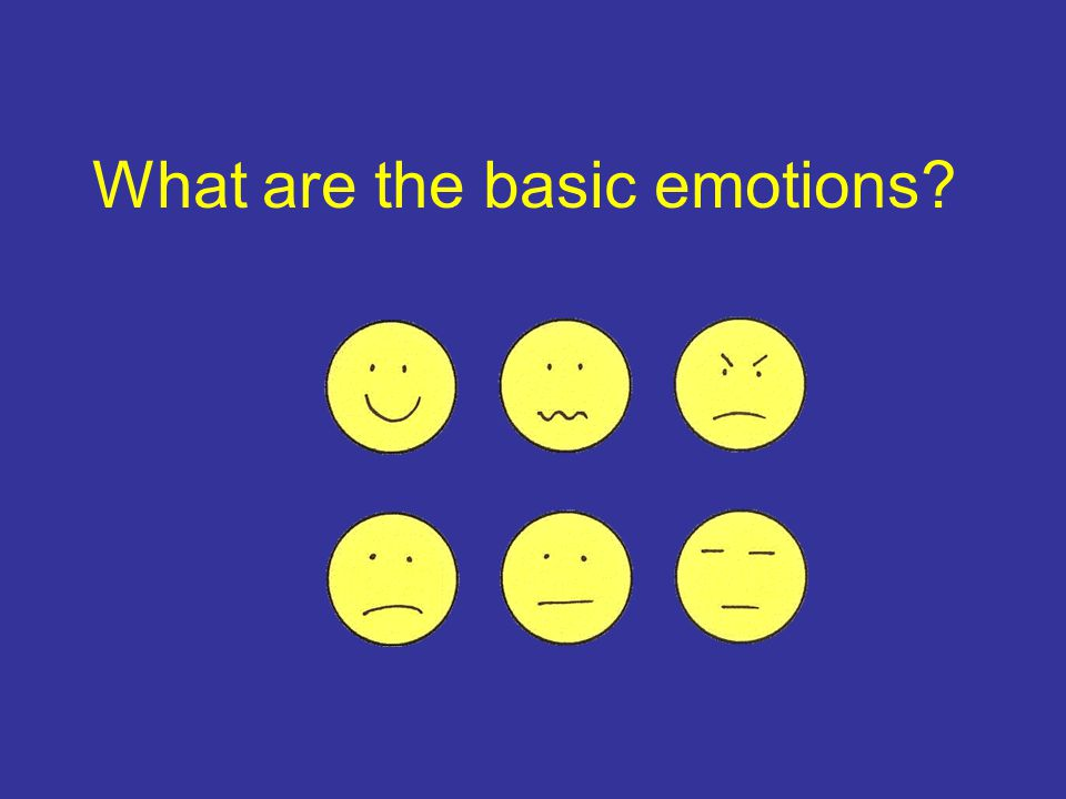 What are the basic emotions?