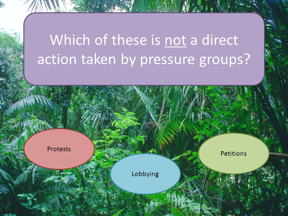 Which of these is not a direct action taken by pressure groups? Protests Lobbying Petitions