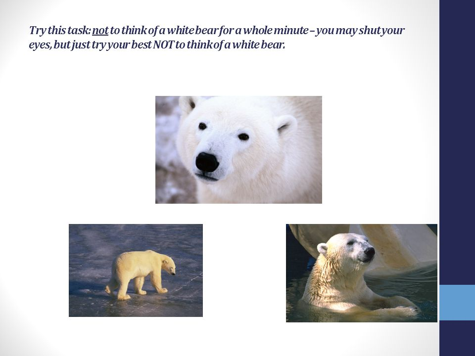 Try this task: not to think of a white bear for a whole minute – you may shut your eyes, but just try your best NOT to think of a white bear.