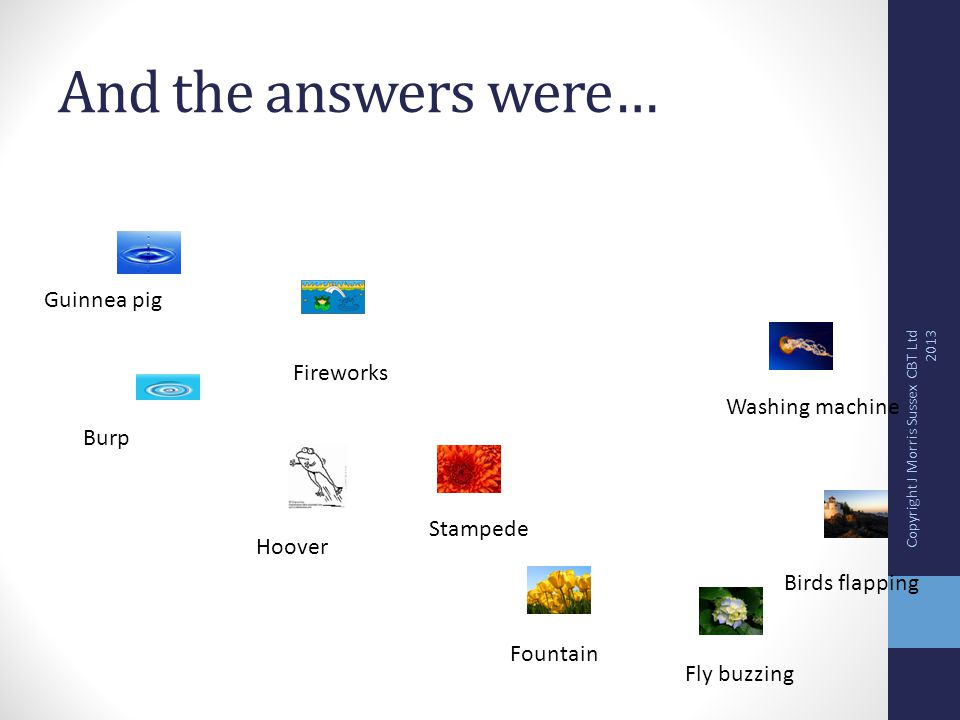 And the answers were… Guinnea pig Burp Fireworks Hoover Stampede Fountain Fly buzzing Birds flapping Washing machine Copyright J Morris Sussex CBT Ltd 2013