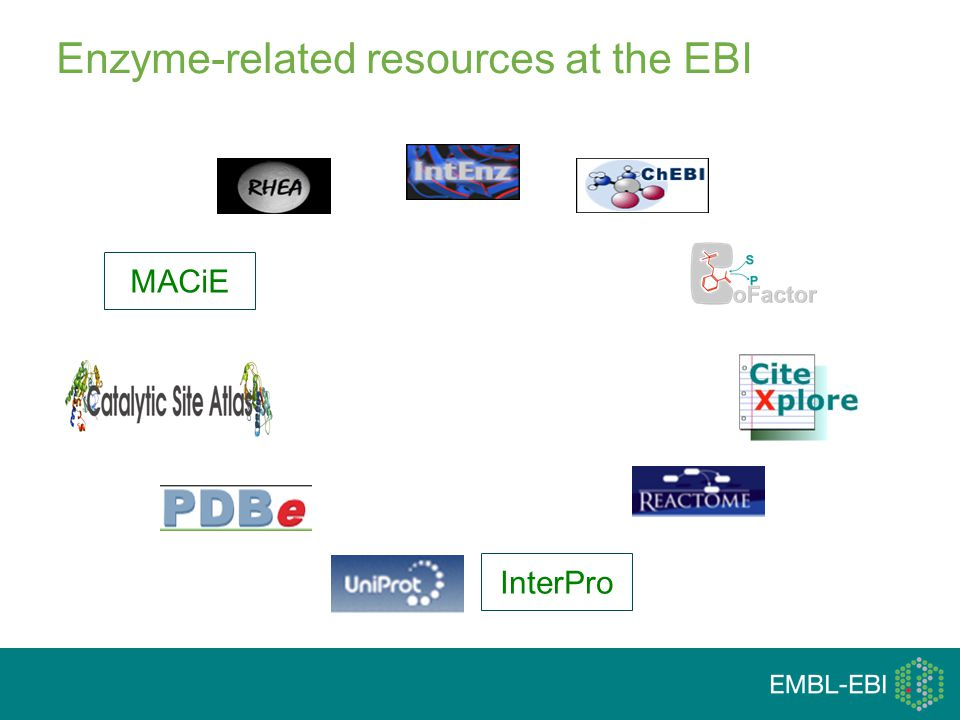 MACiEInterPro Enzyme-related resources at the EBI