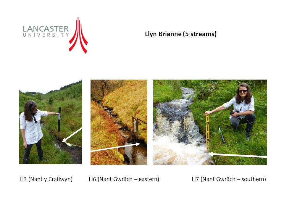 Llyn Brianne (5 streams) LI3 (Nant y Craflwyn) LI6 (Nant Gwrâch – eastern) LI7 (Nant Gwrâch – southern)