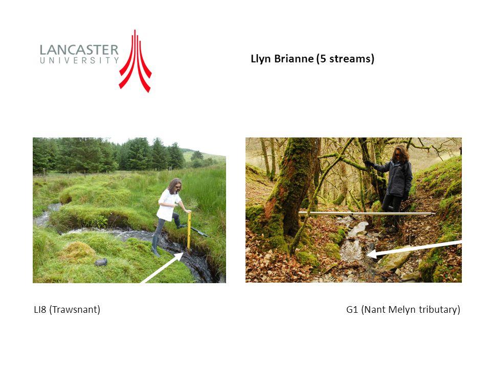 LI8 (Trawsnant) G1 (Nant Melyn tributary) Llyn Brianne (5 streams)