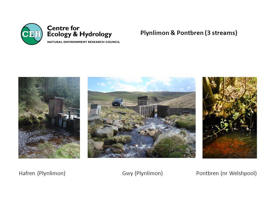 Plynlimon & Pontbren (3 streams) Hafren (Plynlimon) Gwy (Plynlimon) Pontbren (nr Welshpool)