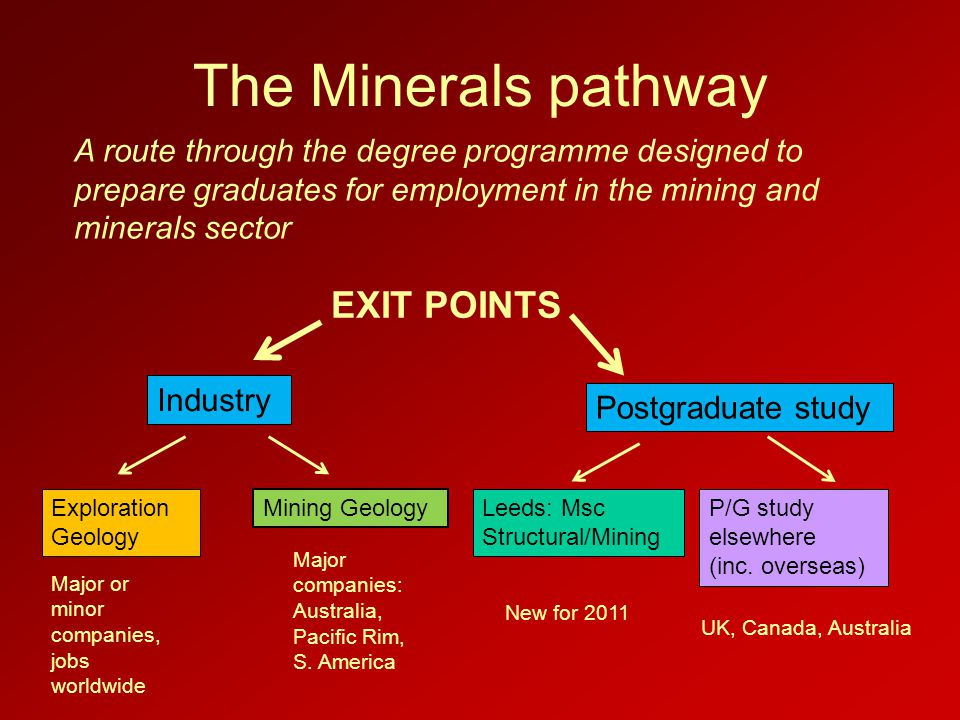 The Minerals pathway Exploration Geology Mining Geology Postgraduate study EXIT POINTS Leeds: Msc Structural/Mining P/G study elsewhere (inc. overseas