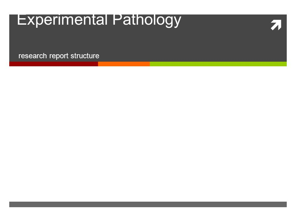  Experimental Pathology research report structure