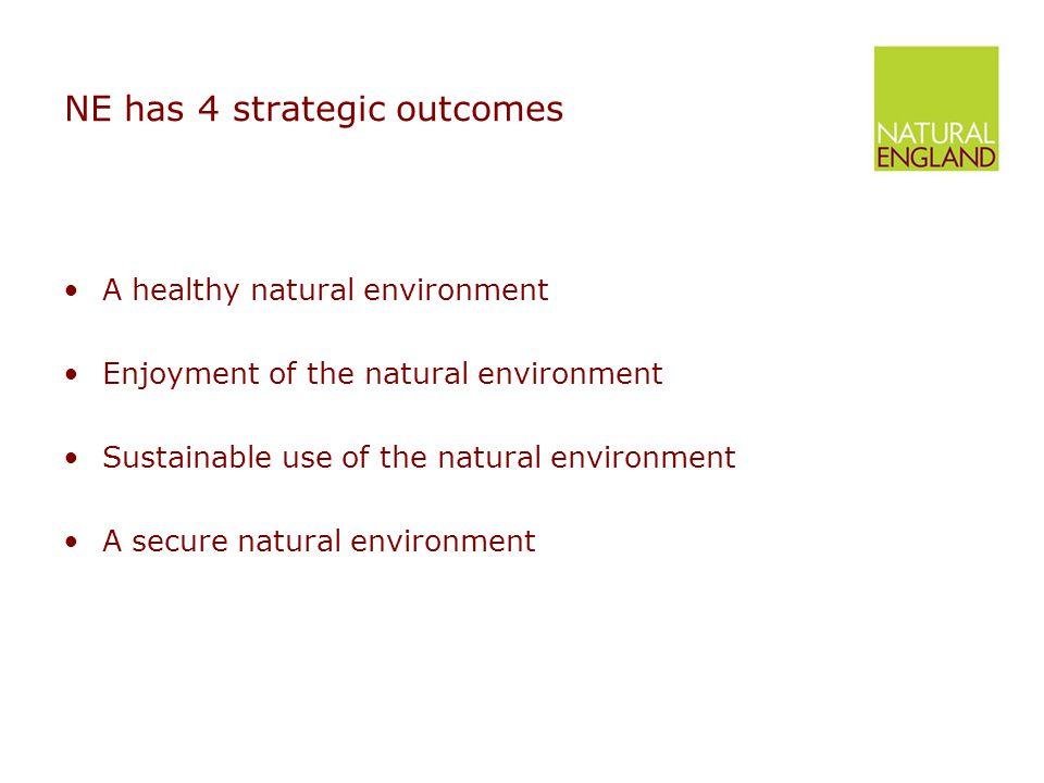 NE has 4 strategic outcomes A healthy natural environment Enjoyment of the natural environment Sustainable use of the natural environment A secure natural environment