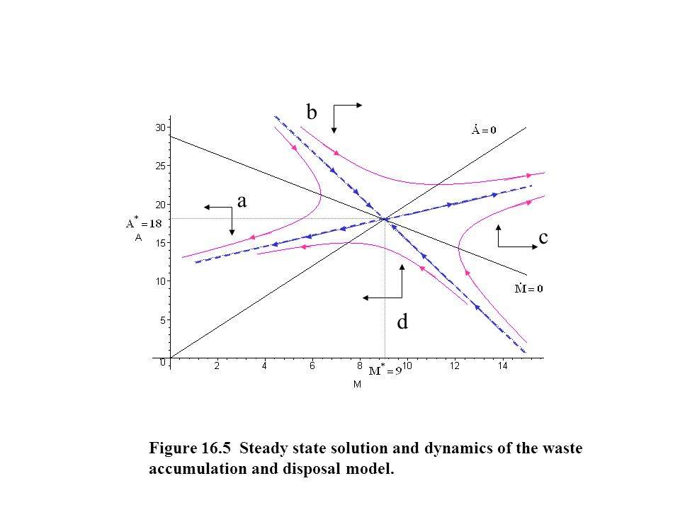 a c d b Figure 16.5 Steady state solution and dynamics of the waste accumulation and disposal model.