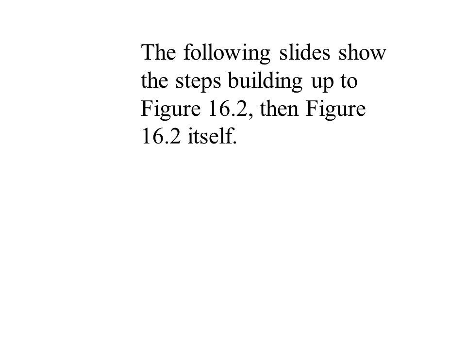 The following slides show the steps building up to Figure 16.2, then Figure 16.2 itself.