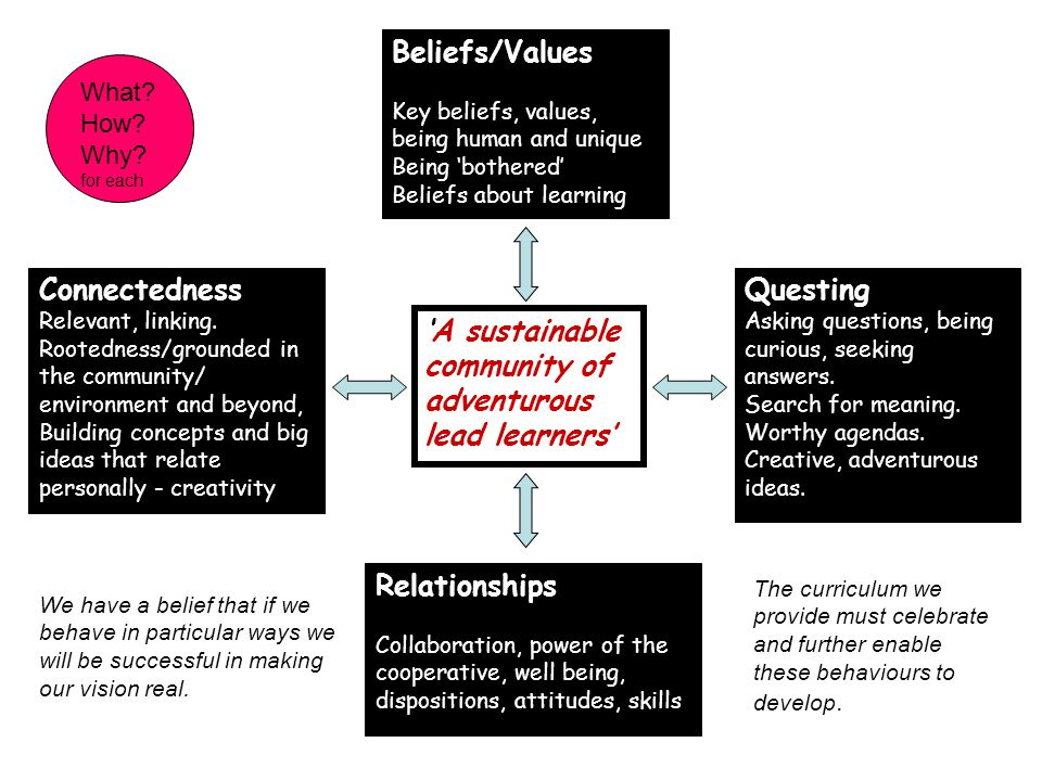 Relationships Collaboration, power of the cooperative, well being, dispositions, attitudes, skills Beliefs/Values Key beliefs, values, being human and unique Being 'bothered' Beliefs about learning Questing Asking questions, being curious, seeking answers.