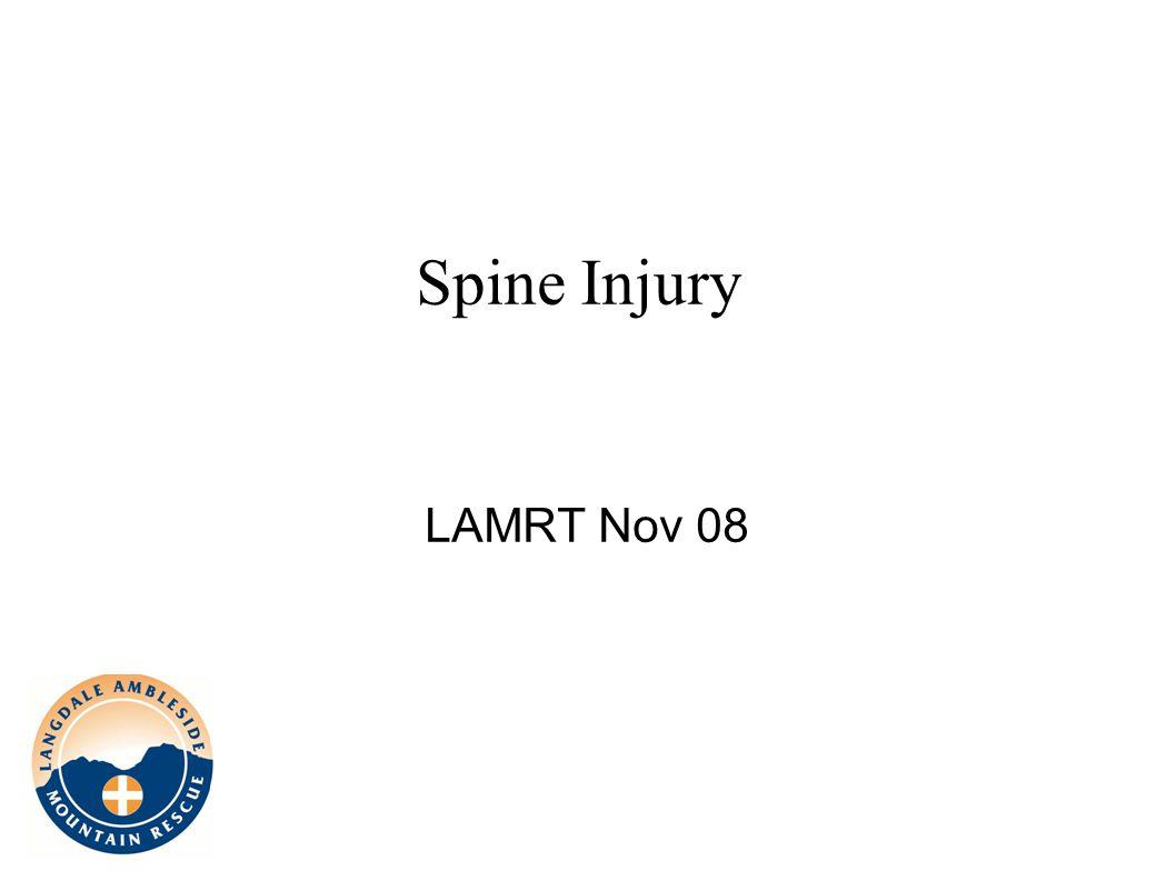 Spine Injury LAMRT Nov 08