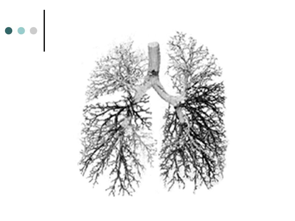 COPD Chronic obstructive pulmonary disease (COPD) is characterised by airflow obstruction.