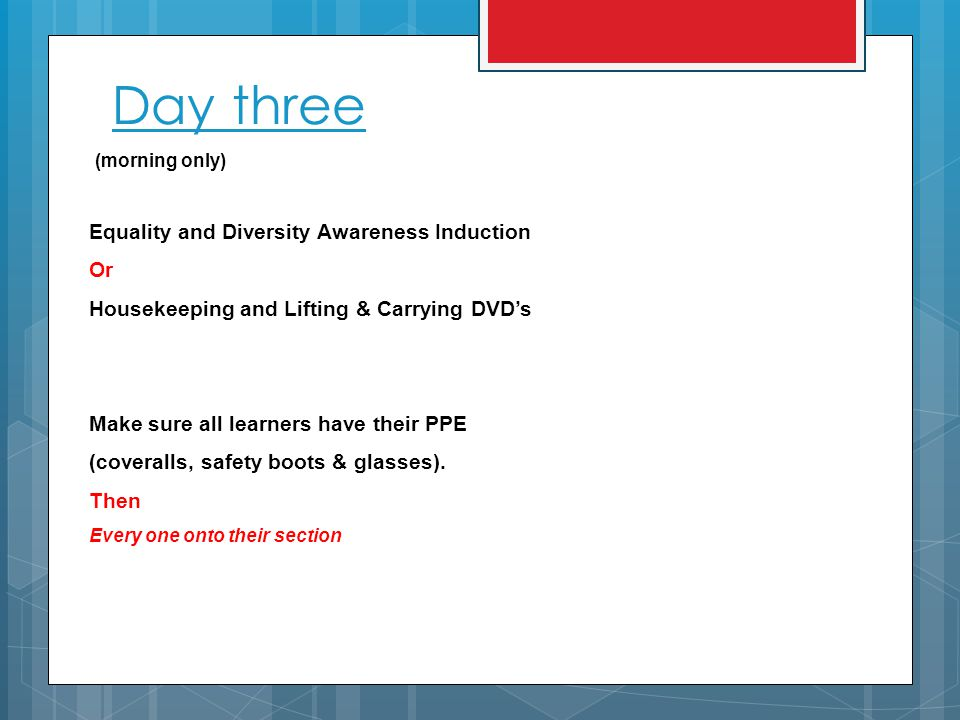 Day three (morning only) Equality and Diversity Awareness Induction Or Housekeeping and Lifting & Carrying DVD's Make sure all learners have their PPE (coveralls, safety boots & glasses).