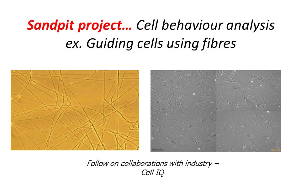 Sandpit project… Cell behaviour analysis ex.