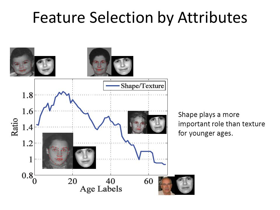 Feature Selection by Attributes Shape plays a more important role than texture for younger ages.