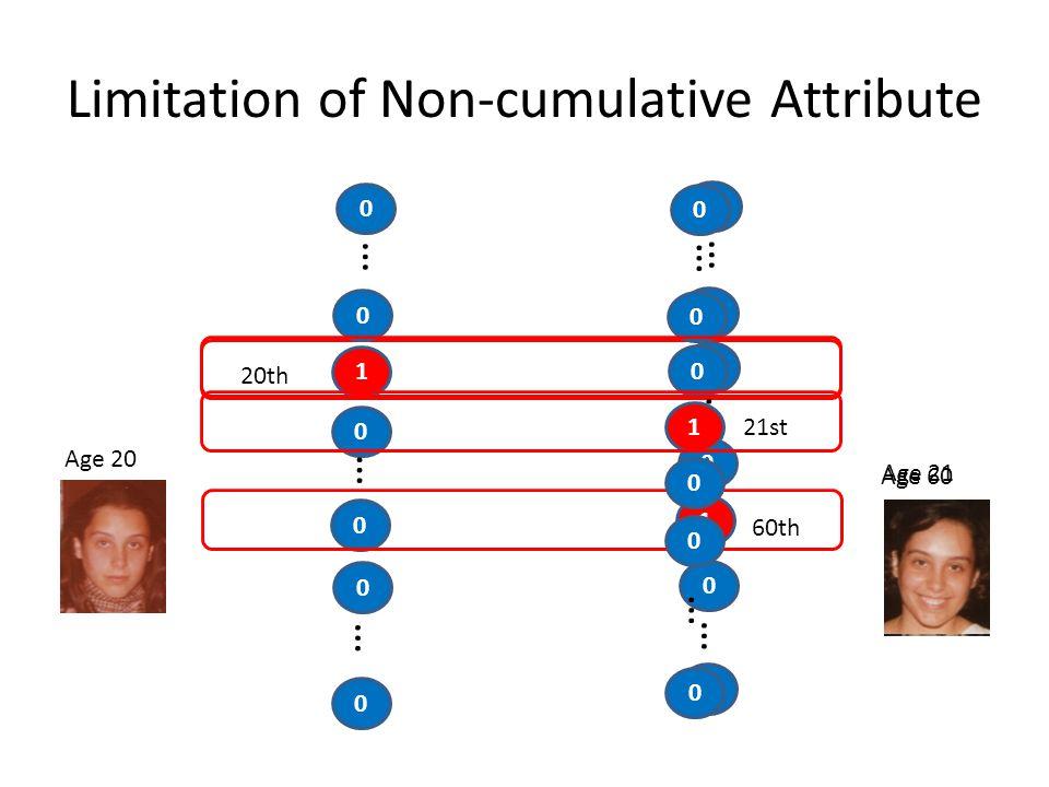 Limitation of Non-cumulative Attribute Age 20 0 1 … 20th 0 … 0 Age 60 60th 0 … 0 0 0 1 … 0 … 0 0 … 0 0 21st 0 1 … 0 … 0 0 0 0 Age 21