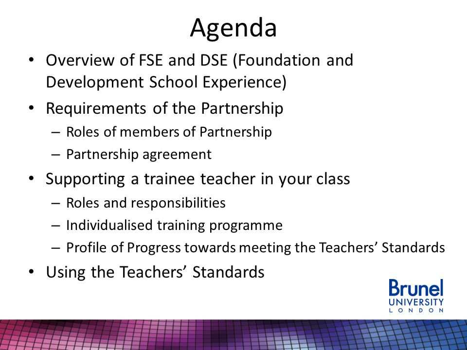 Agenda Overview of FSE and DSE (Foundation and Development School Experience) Requirements of the Partnership – Roles of members of Partnership – Partnership agreement Supporting a trainee teacher in your class – Roles and responsibilities – Individualised training programme – Profile of Progress towards meeting the Teachers' Standards Using the Teachers' Standards