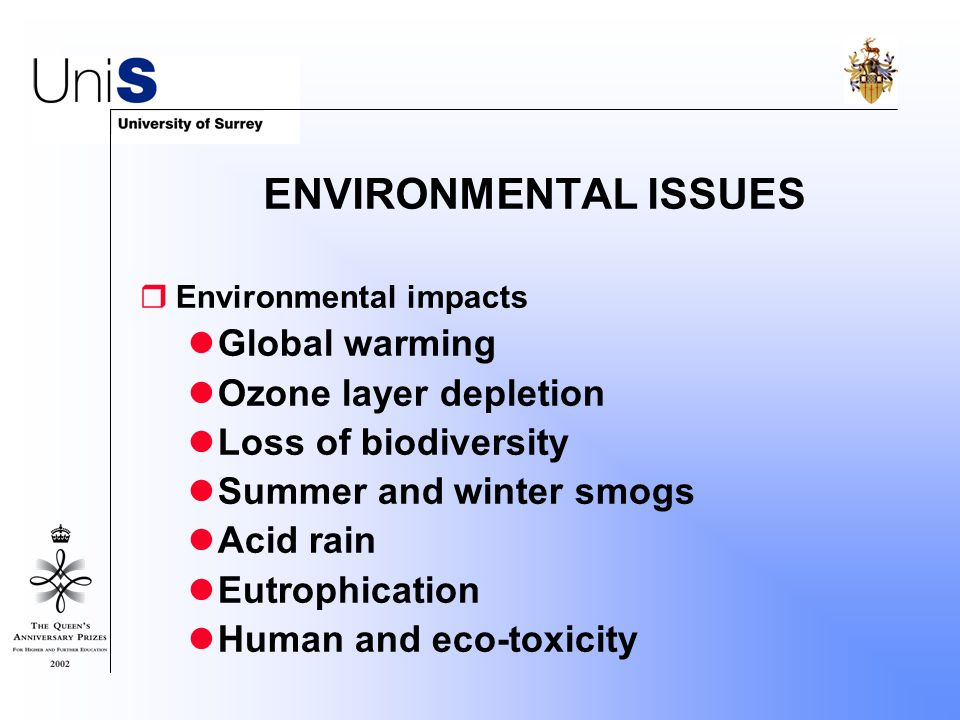 ENVIRONMENTAL ISSUES  Environmental impacts Global warming Ozone layer depletion Loss of biodiversity Summer and winter smogs Acid rain Eutrophication Human and eco-toxicity