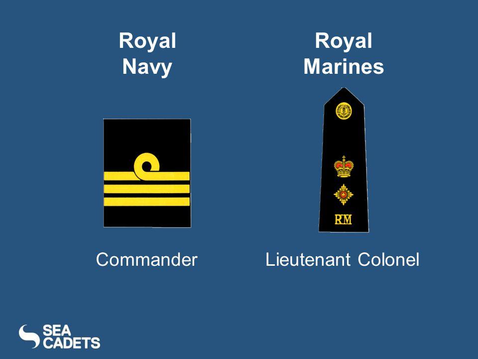 CommanderLieutenant Colonel Royal Navy Royal Marines