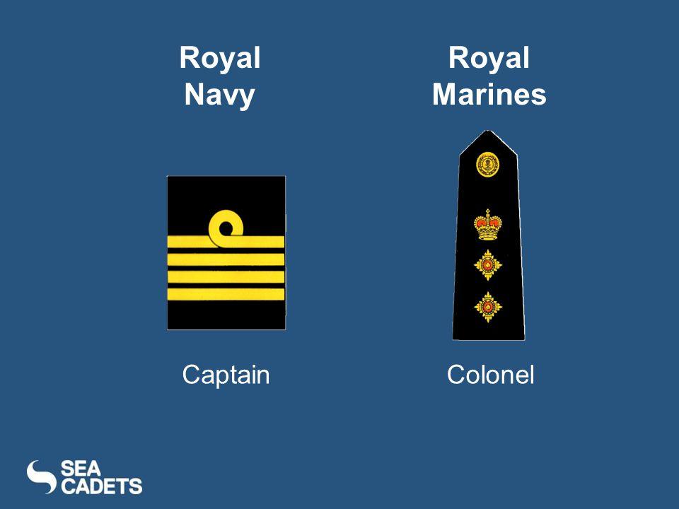 CaptainColonel Royal Navy Royal Marines