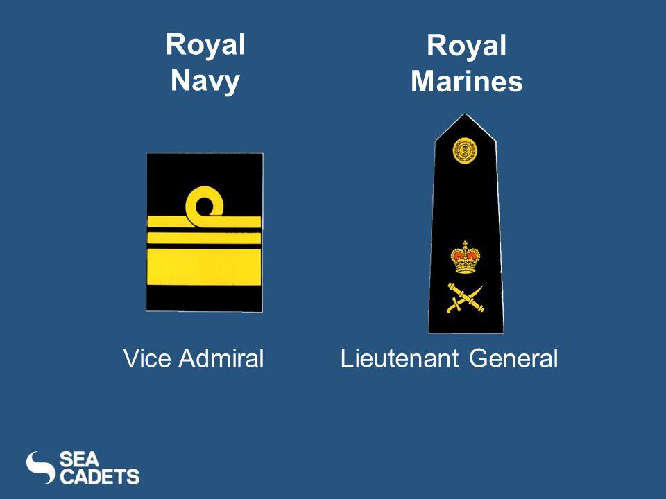 Vice AdmiralLieutenant General Royal Navy Royal Marines