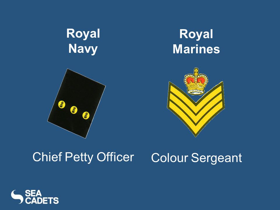 Chief Petty Officer Colour Sergeant Royal Navy Royal Marines