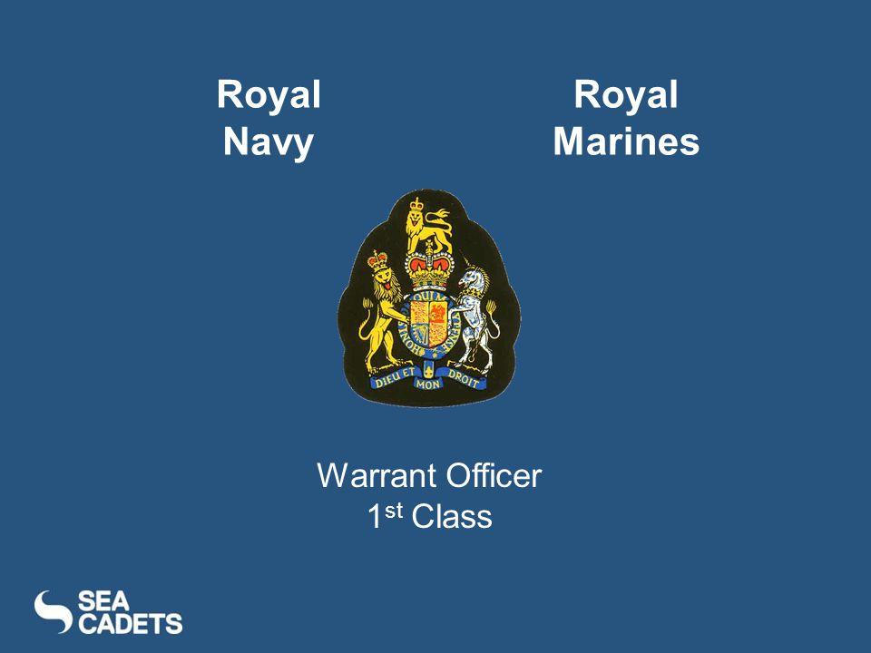 Warrant Officer 1 st Class Royal Navy Royal Marines