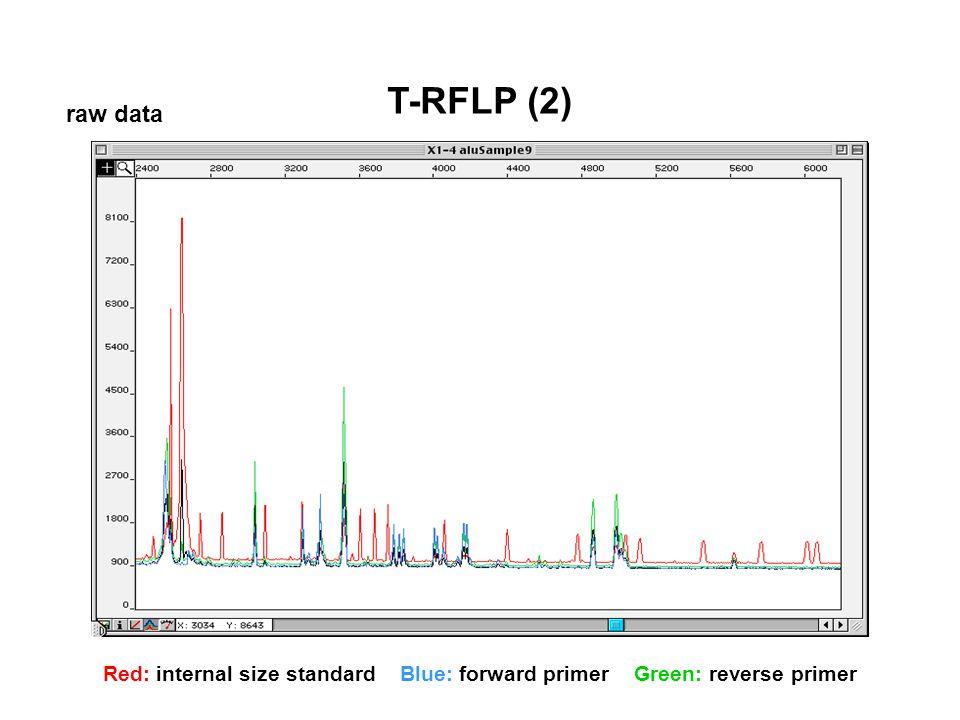 T-RFLP (2) raw data Red: internal size standard Blue: forward primer Green: reverse primer