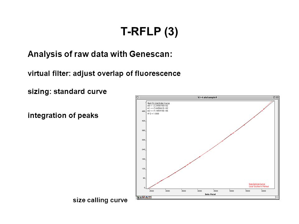 T-RFLP (3) Analysis of raw data with Genescan: virtual filter: adjust overlap of fluorescence sizing: standard curve integration of peaks size calling curve