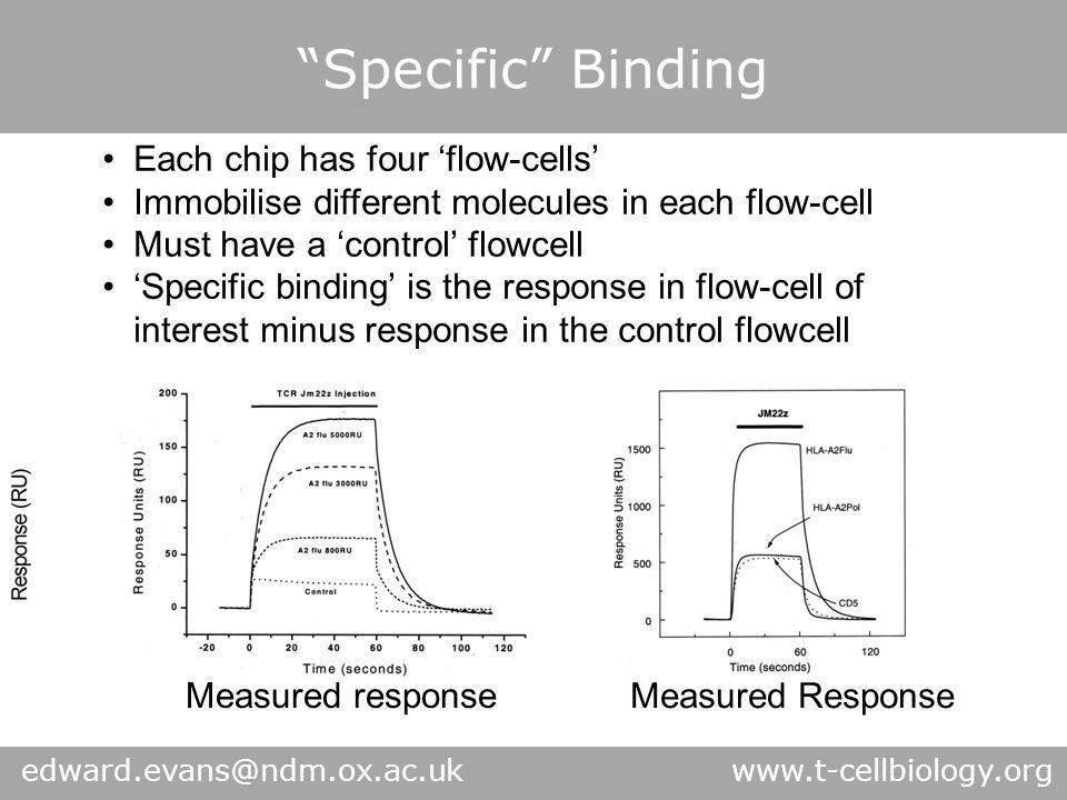 """Specific"" Binding Response in control / empty flowcell due to viscosity of protein solution injected – therefore 'control' response IS proportional t"