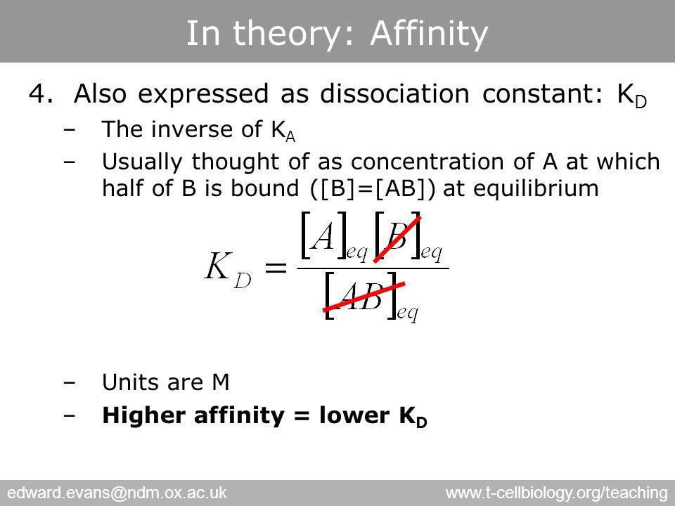 edward.evans@ndm.ox.ac.ukwww.t-cellbiology.org/teaching In theory: Affinity 4.Also expressed as dissociation constant: K D –The inverse of K A –Usually thought of as concentration of A at which half of B is bound ([B]=[AB]) at equilibrium –Units are M –Higher affinity = lower K D