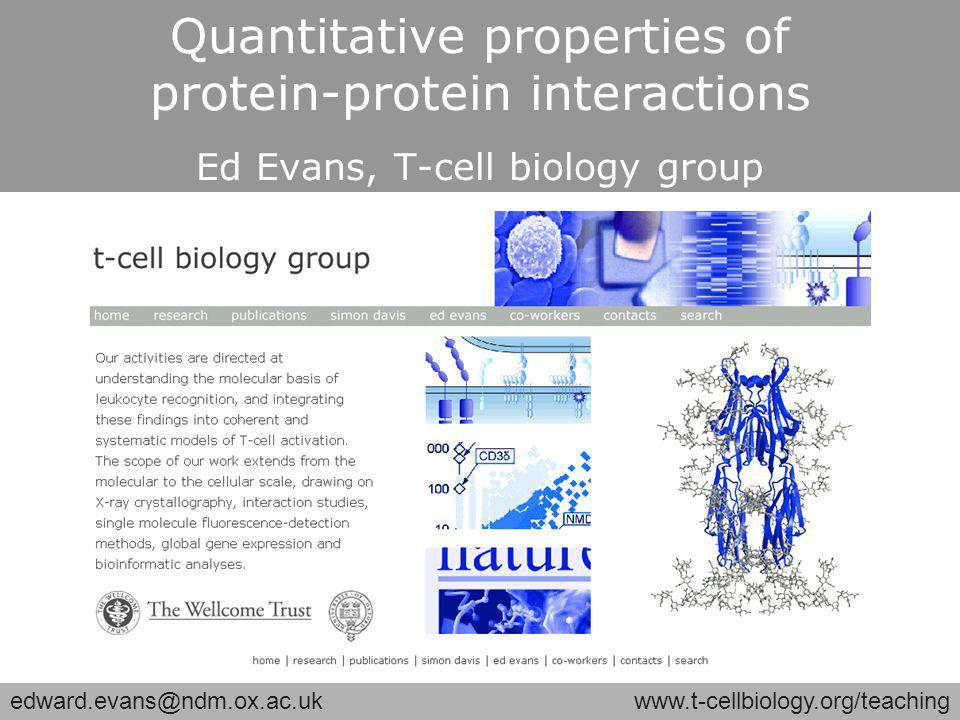 edward.evans@ndm.ox.ac.ukwww.t-cellbiology.org/teaching Quantitative properties of protein-protein interactions Ed Evans, T-cell biology group