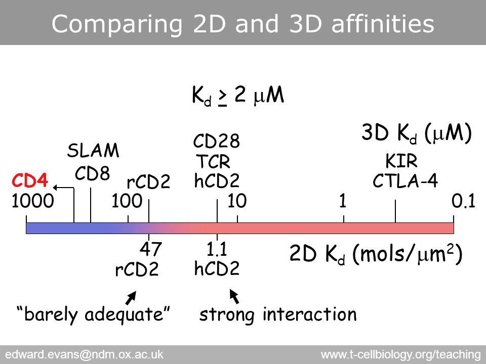 edward.evans@ndm.ox.ac.ukwww.t-cellbiology.org/teaching Comparing 2D and 3D affinities 1101000.11000 3D K d (  M) hCD2 TCR CD28 CTLA-4 KIR CD8 SLAM CD4 2D K d (mols/  m 2 ) 471.1 hCD2 rCD2 K d > 2  M barely adequate strong interaction
