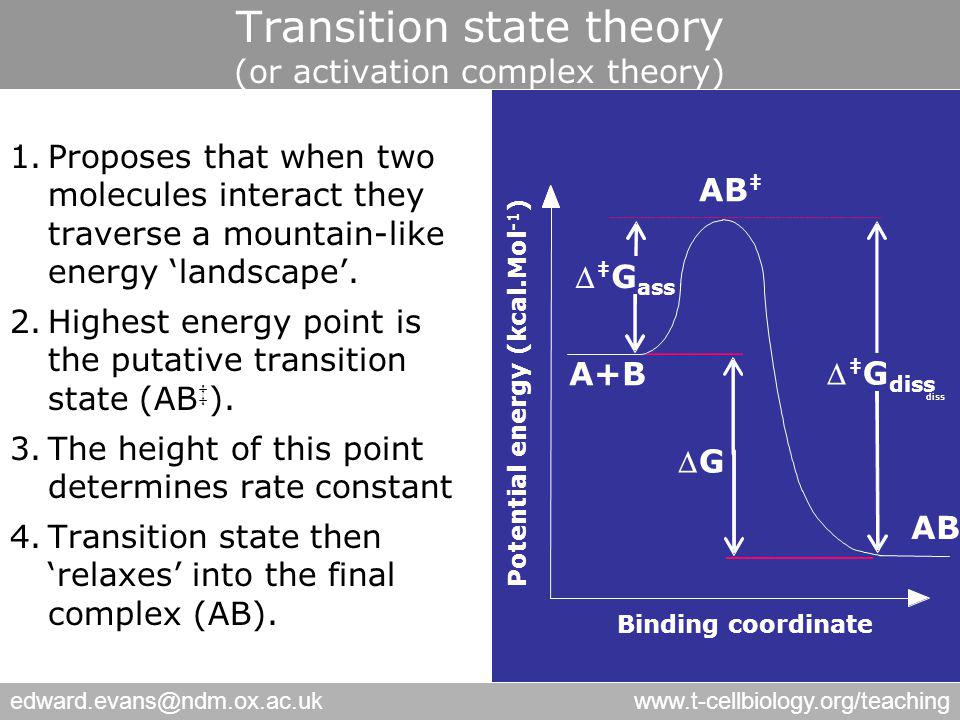 edward.evans@ndm.ox.ac.ukwww.t-cellbiology.org/teaching Transition state theory (or activation complex theory) 1.Proposes that when two molecules interact they traverse a mountain-like energy 'landscape'.