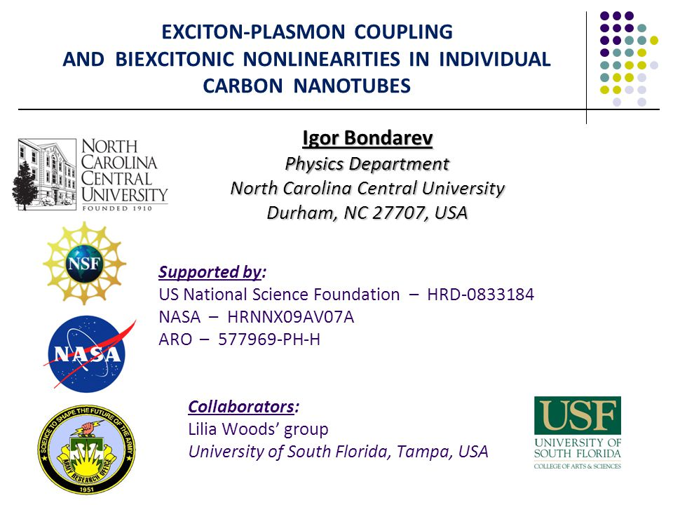 Numerical Results Tuning Excitons to Plasmon Resonances in (11,0) & (10,0) CNs I.V.Bondarev, L.M.Woods, and K.Tatur, Phys.