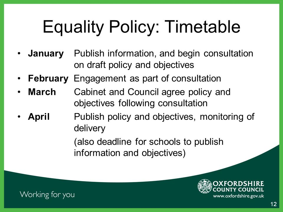 Equality Policy: Timetable January Publish information, and begin consultation on draft policy and objectives February Engagement as part of consultation March Cabinet and Council agree policy and objectives following consultation April Publish policy and objectives, monitoring of delivery (also deadline for schools to publish information and objectives) 12