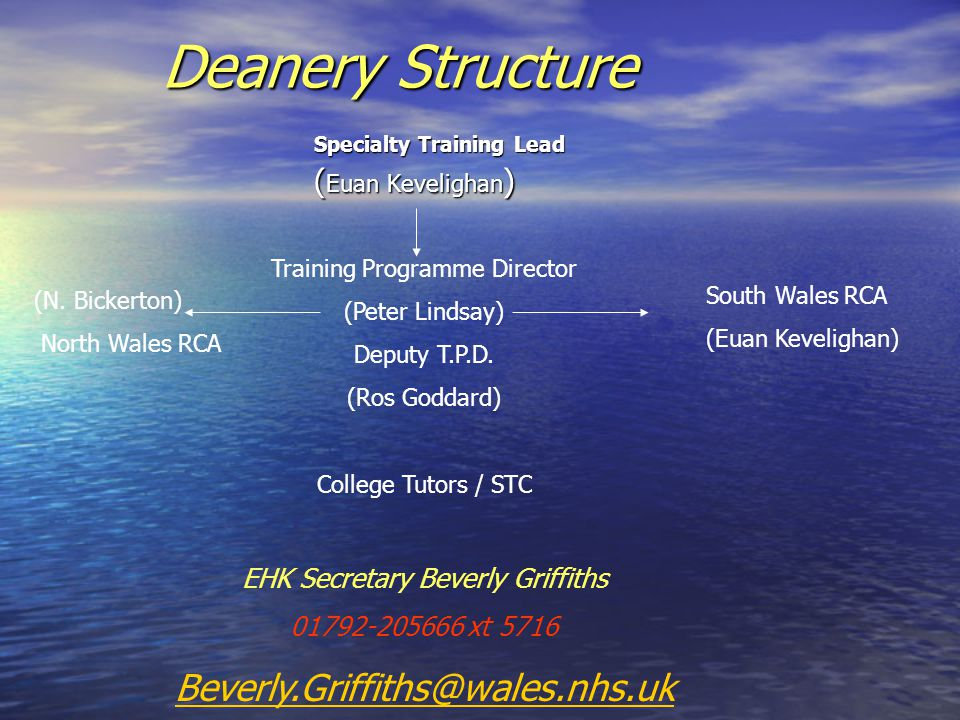 Deanery Structure Specialty Training Lead ( Euan Kevelighan ) (N.