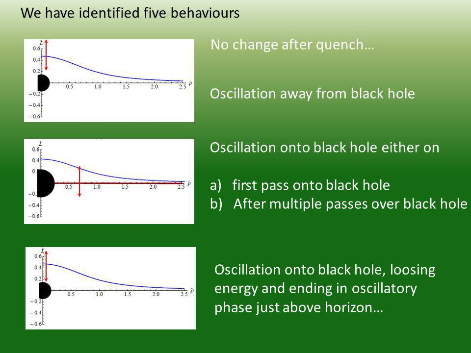 Oscillation away from black hole We have identified five behaviours Oscillation onto black hole either on a) first pass onto black hole b) After multiple passes over black hole Oscillation onto black hole, loosing energy and ending in oscillatory phase just above horizon… No change after quench…